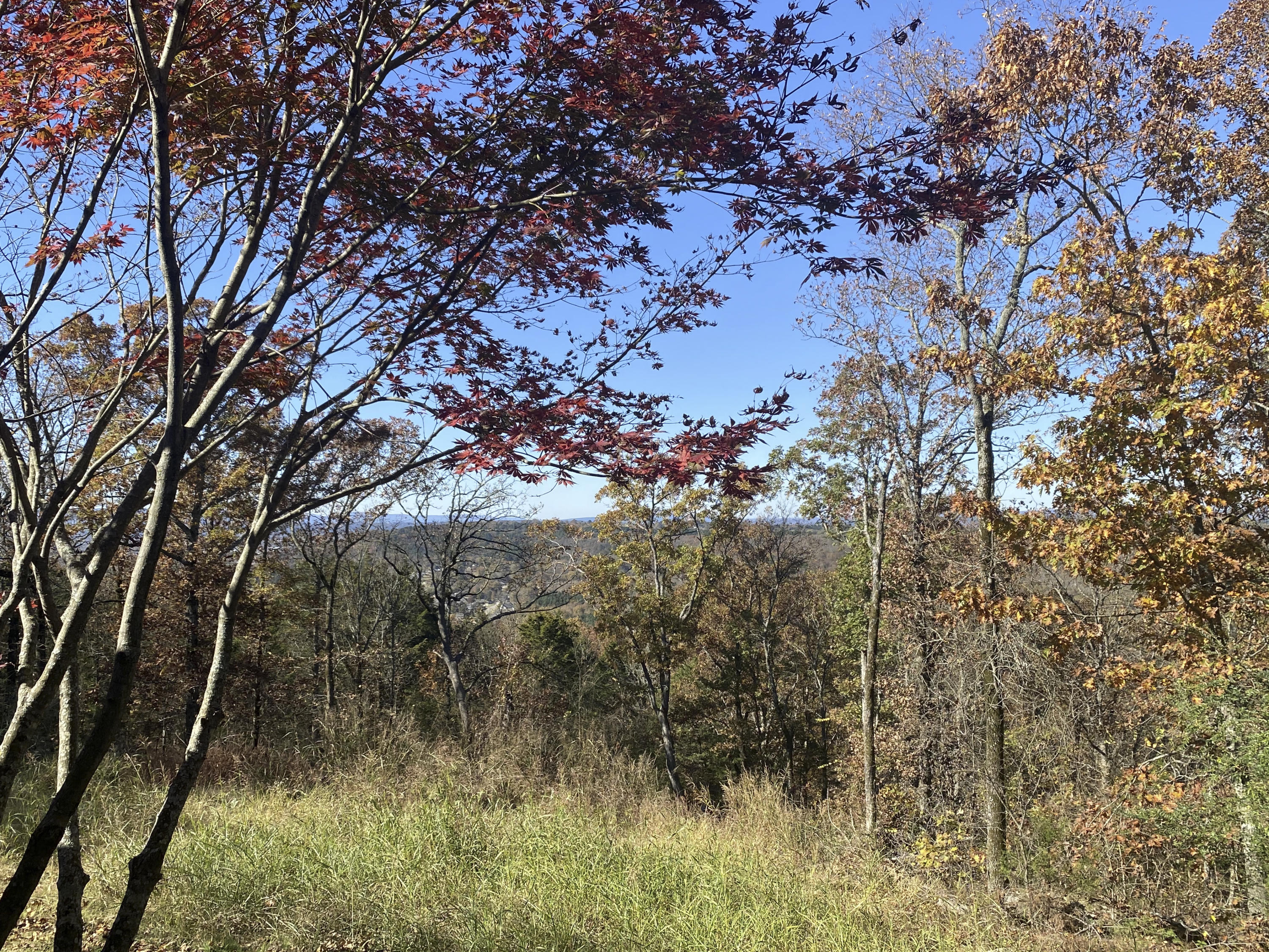 Large photo 40 of home for sale at 3530 crow mt Road, Pottsville, AR
