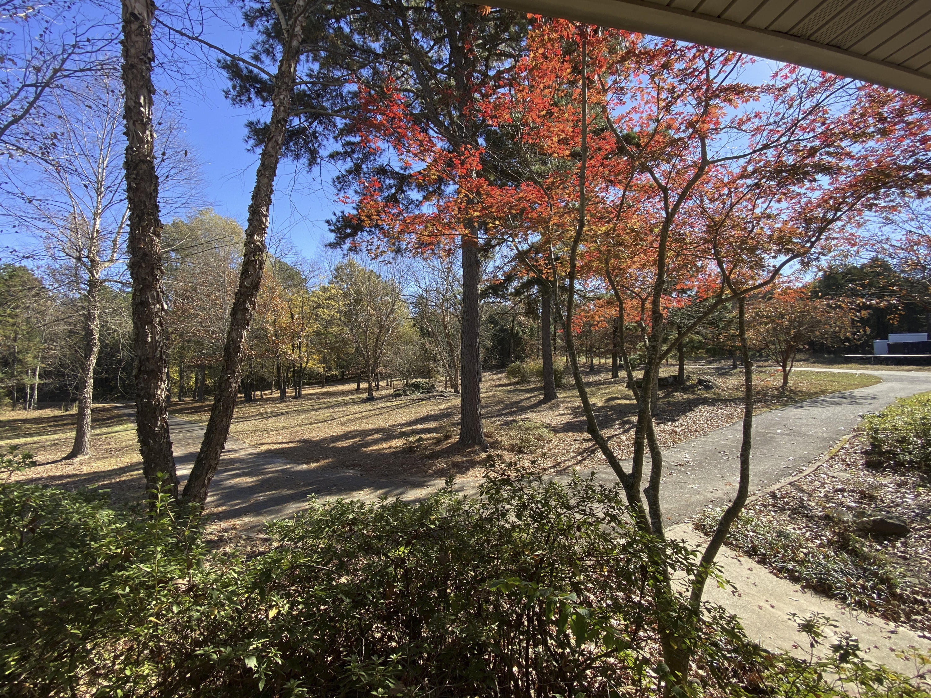 Large photo 51 of home for sale at 3530 crow mt Road, Pottsville, AR