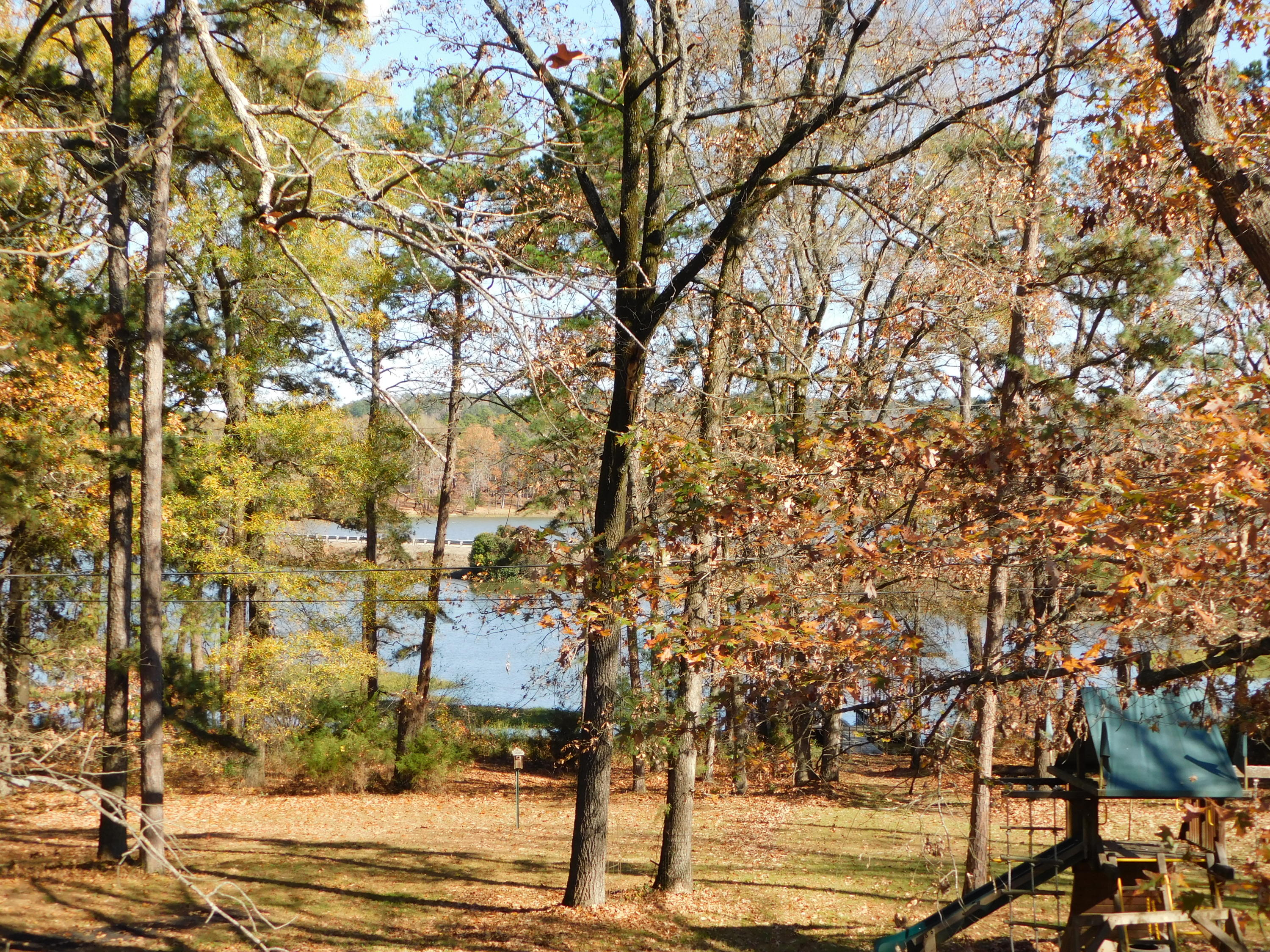 Large photo 33 of home for sale at 94 Gum Lane, Russellville, AR