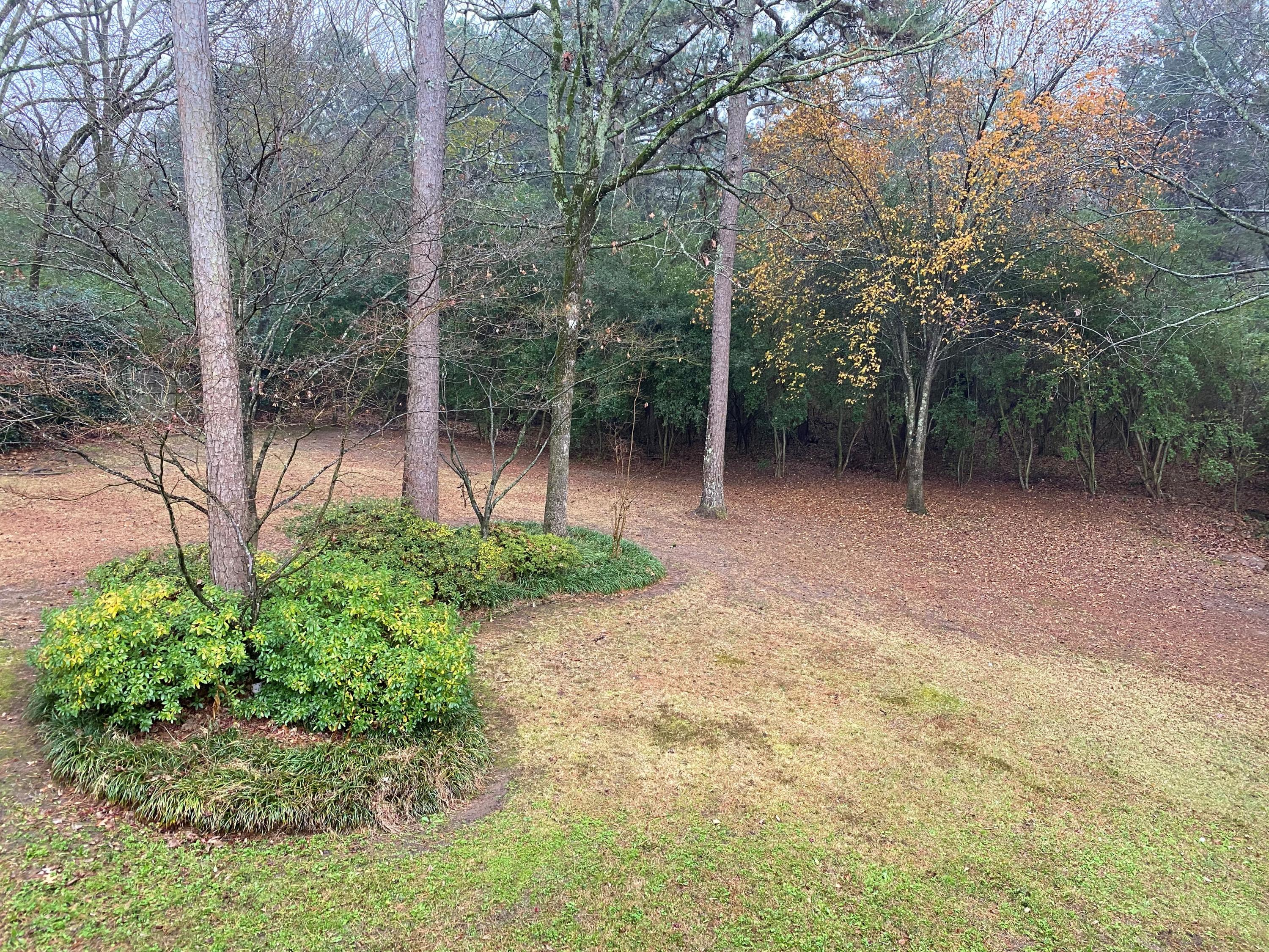 Large photo 40 of home for sale at 209 Hickory Hills Drive, Russellville, AR