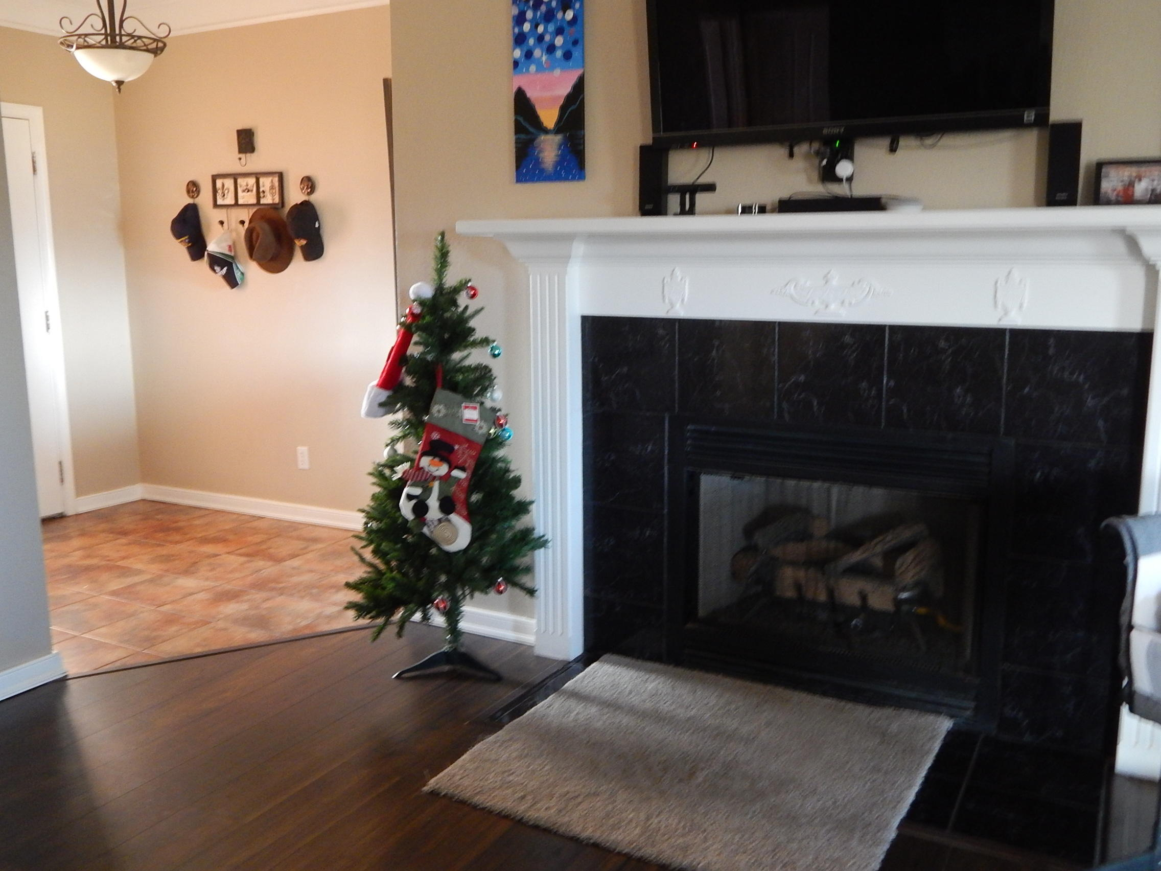 Large photo 8 of home for sale at 141 Mountain Point Road, Russellville, AR