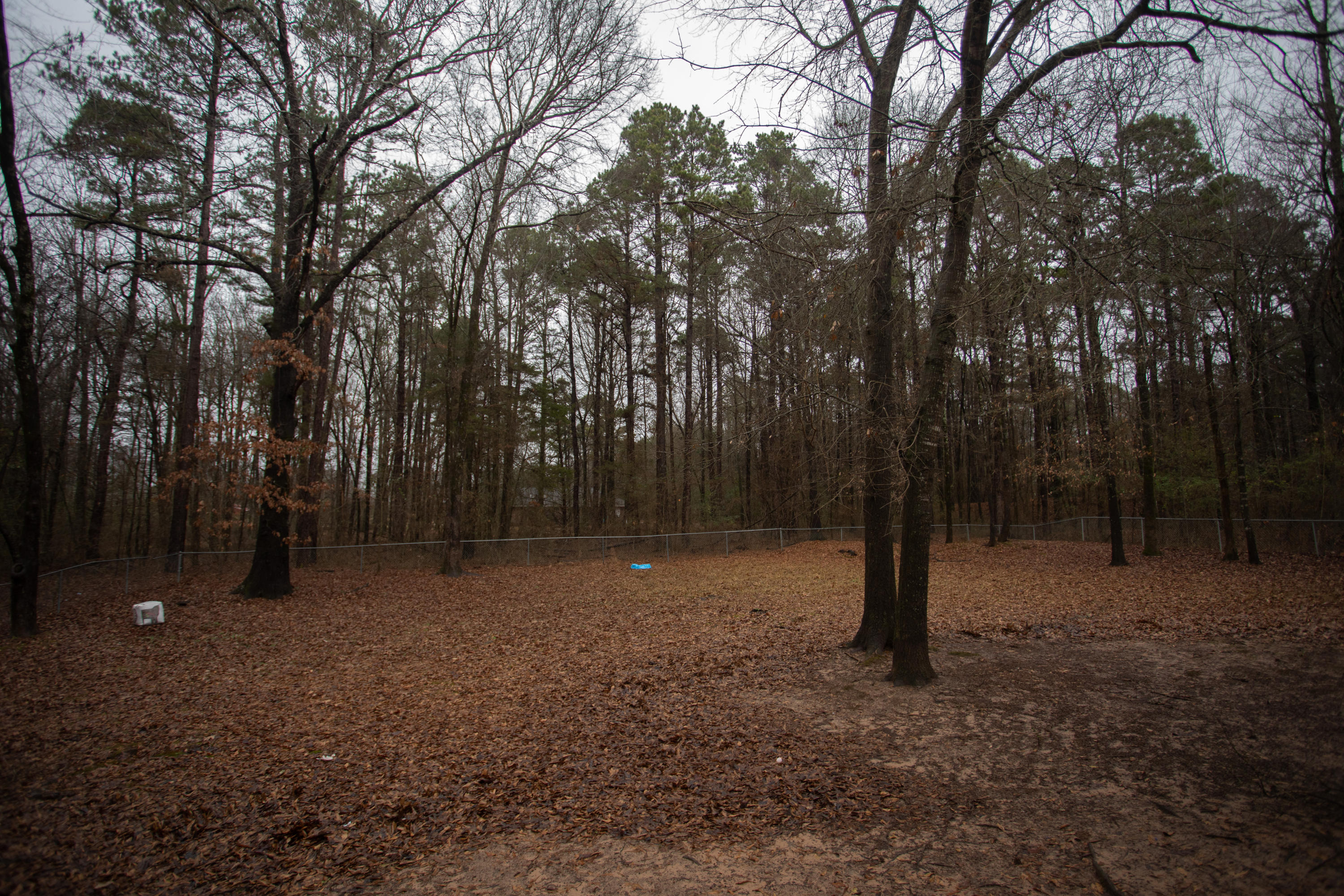 Large photo 3 of home for sale at 229 Fox Glove Road, Russellville, AR
