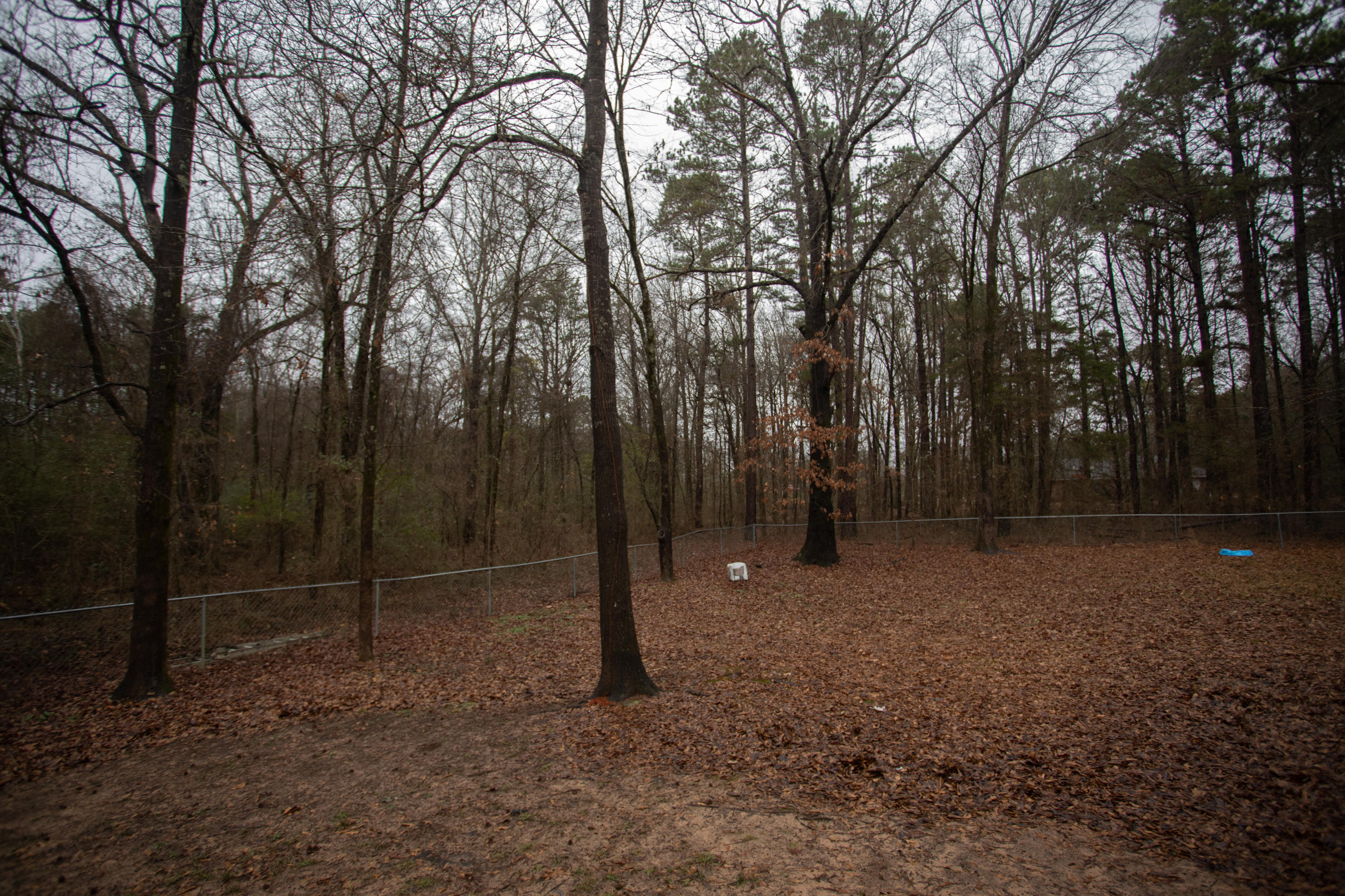 Large photo 4 of home for sale at 229 Fox Glove Road, Russellville, AR
