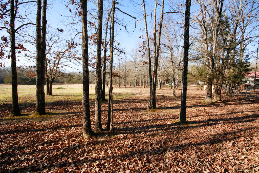 Large photo 116 of home for sale at 20 Blankenship Drive, Conway, AR