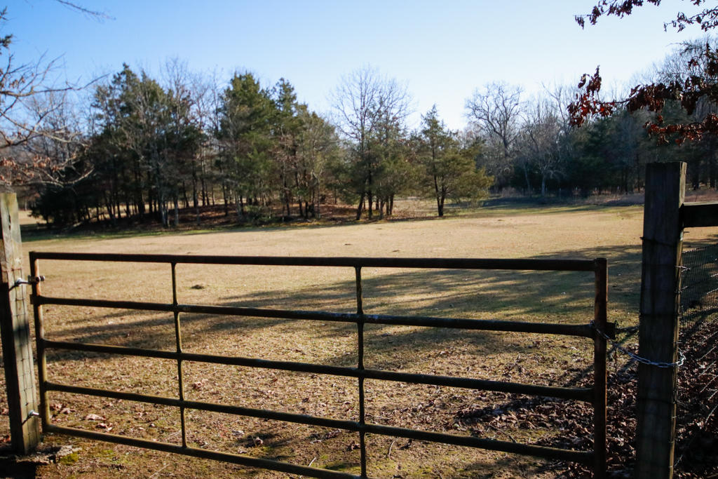 Large photo 87 of home for sale at 20 Blankenship Drive, Conway, AR