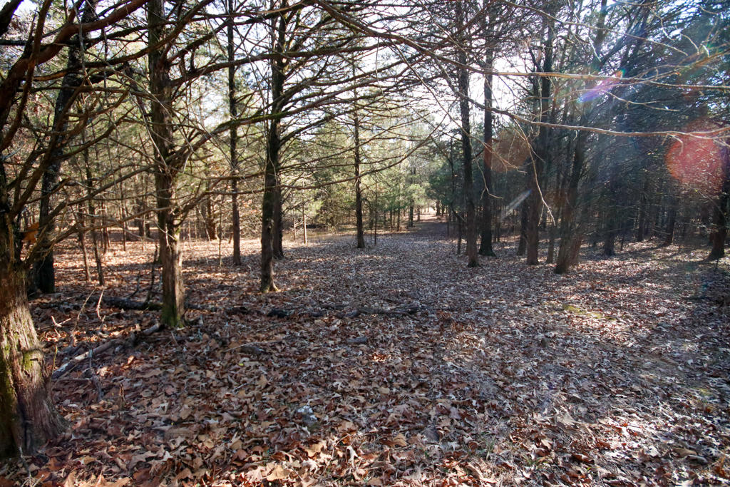 Large photo 111 of home for sale at 20 Blankenship Drive, Conway, AR