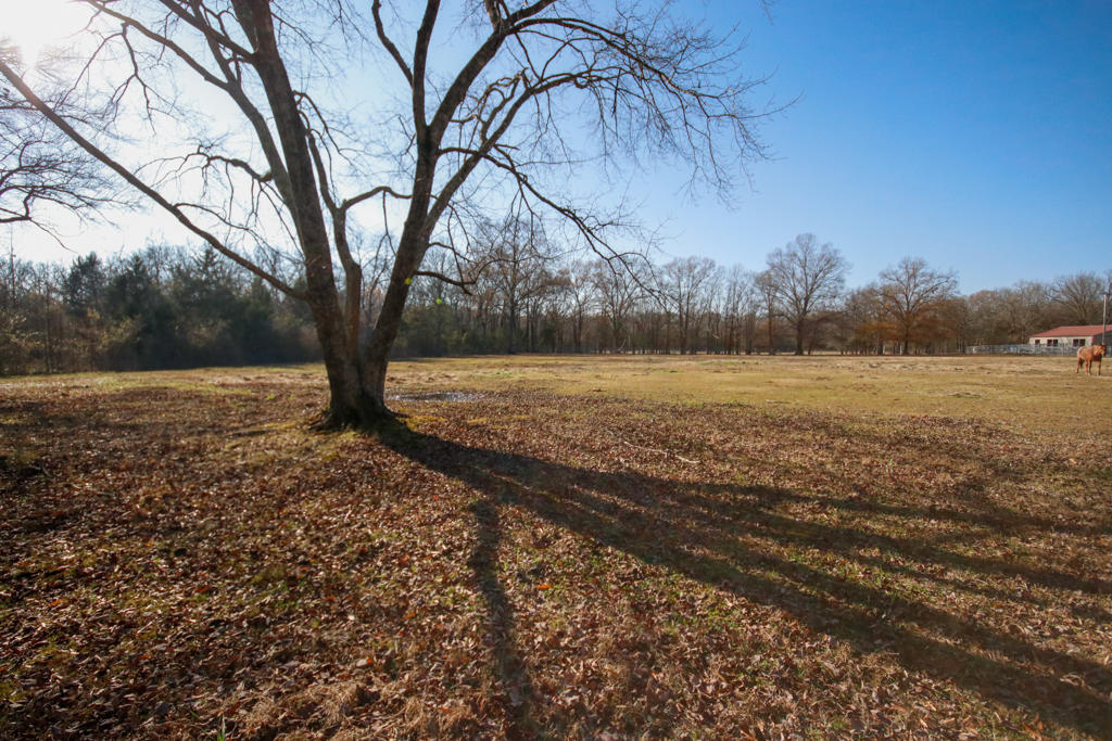 Large photo 108 of home for sale at 20 Blankenship Drive, Conway, AR