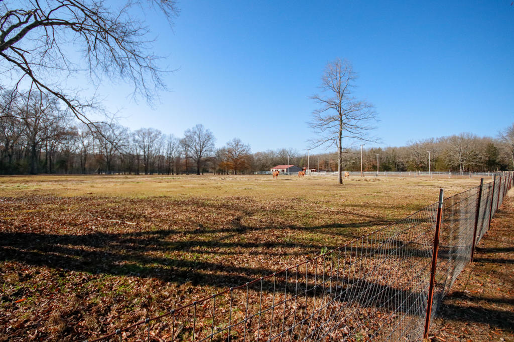 Large photo 107 of home for sale at 20 Blankenship Drive, Conway, AR