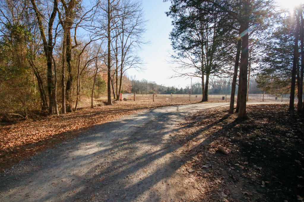 Large photo 105 of home for sale at 20 Blankenship Drive, Conway, AR