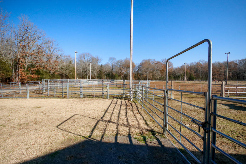 Large photo 78 of home for sale at 20 Blankenship Drive, Conway, AR