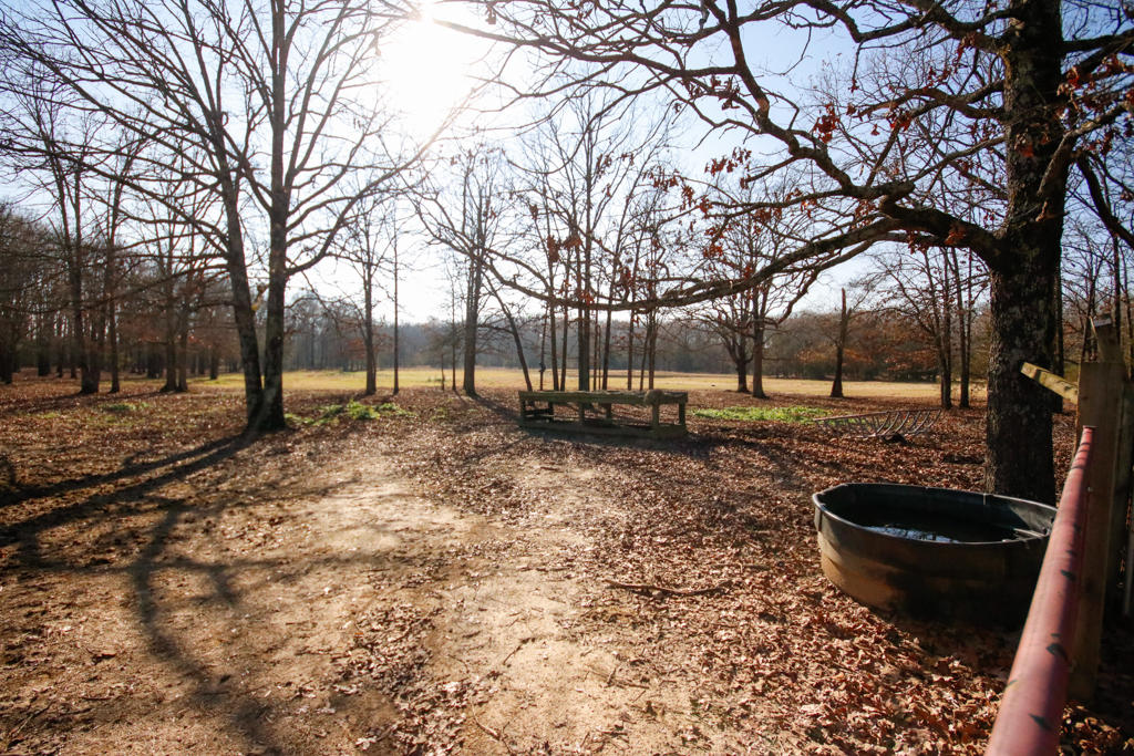 Large photo 99 of home for sale at 20 Blankenship Drive, Conway, AR