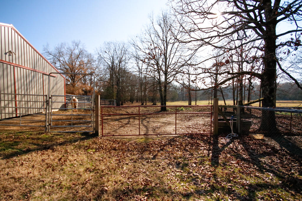 Large photo 98 of home for sale at 20 Blankenship Drive, Conway, AR