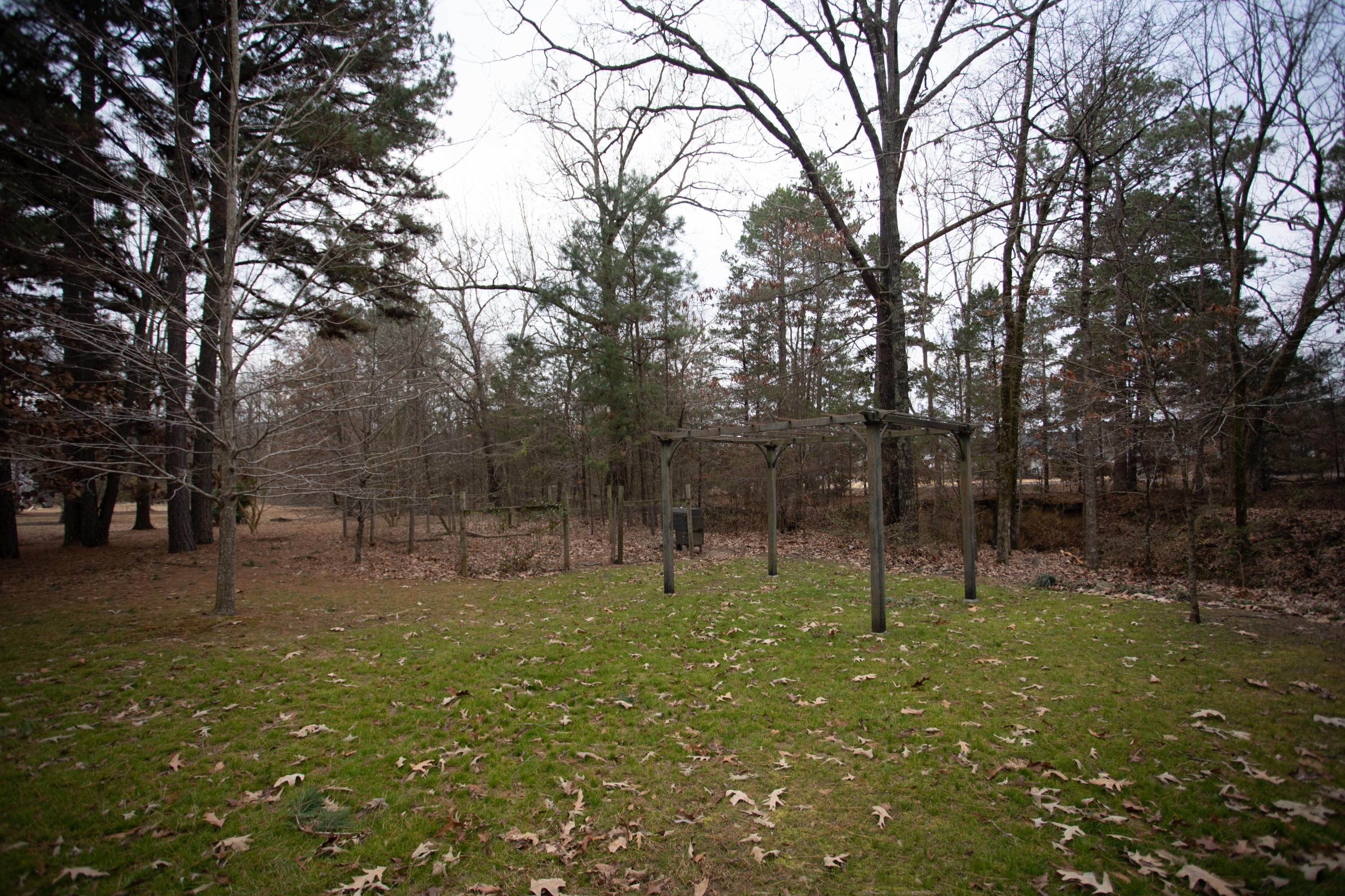 Large photo 35 of home for sale at 251 Pike Lane, Russellville, AR