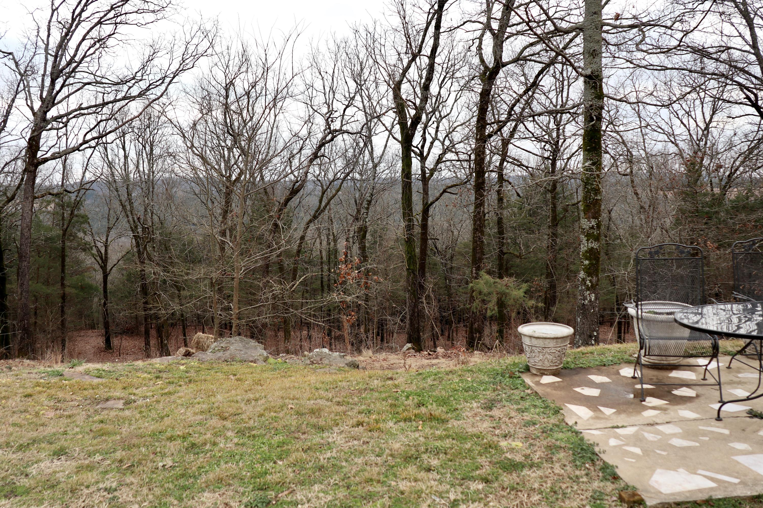 Large photo 77 of home for sale at 927 Philpot Road, Ozark, AR