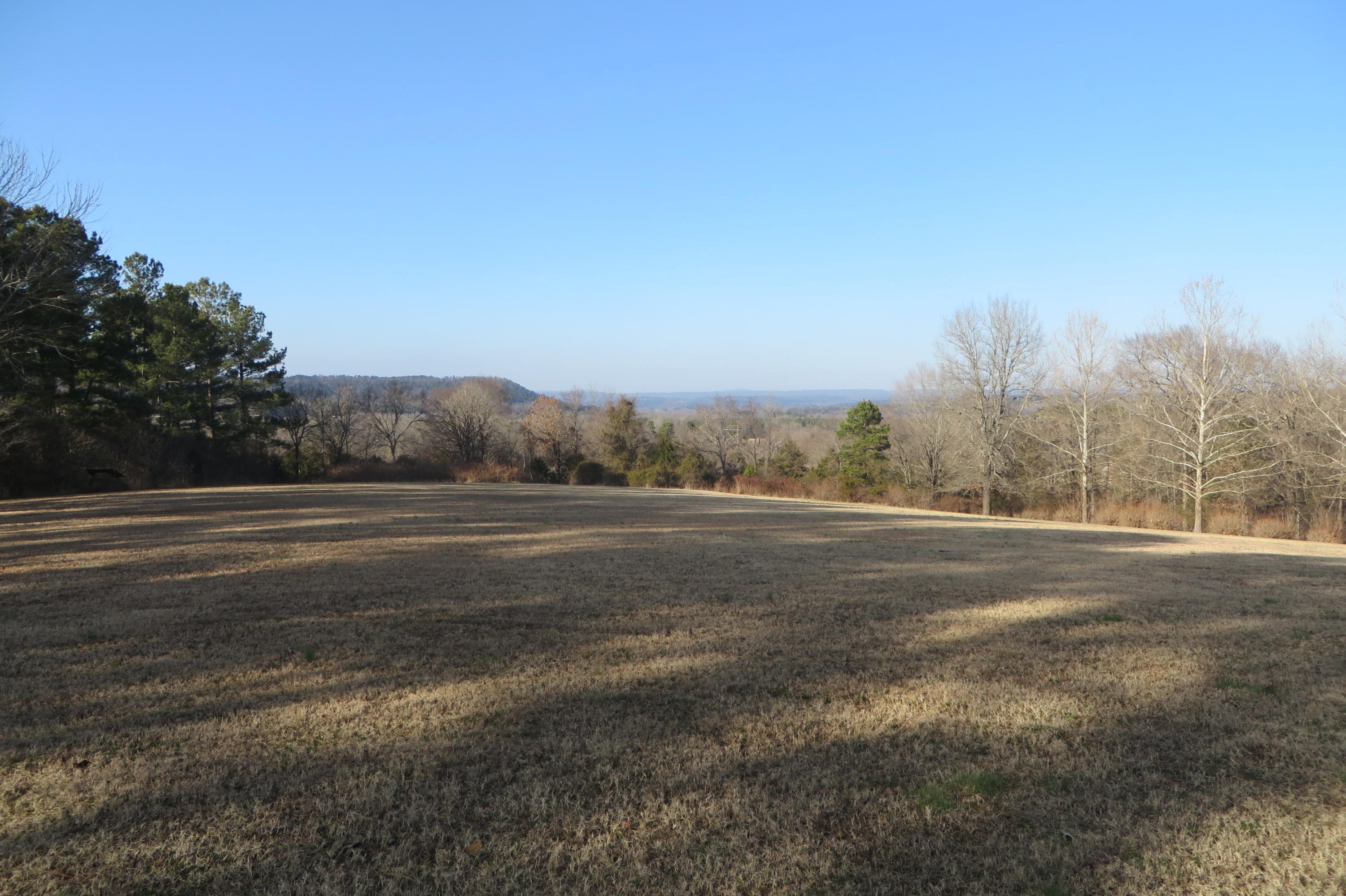 Large photo 9 of home for sale at 949 Terra Villa Road, Dover, AR