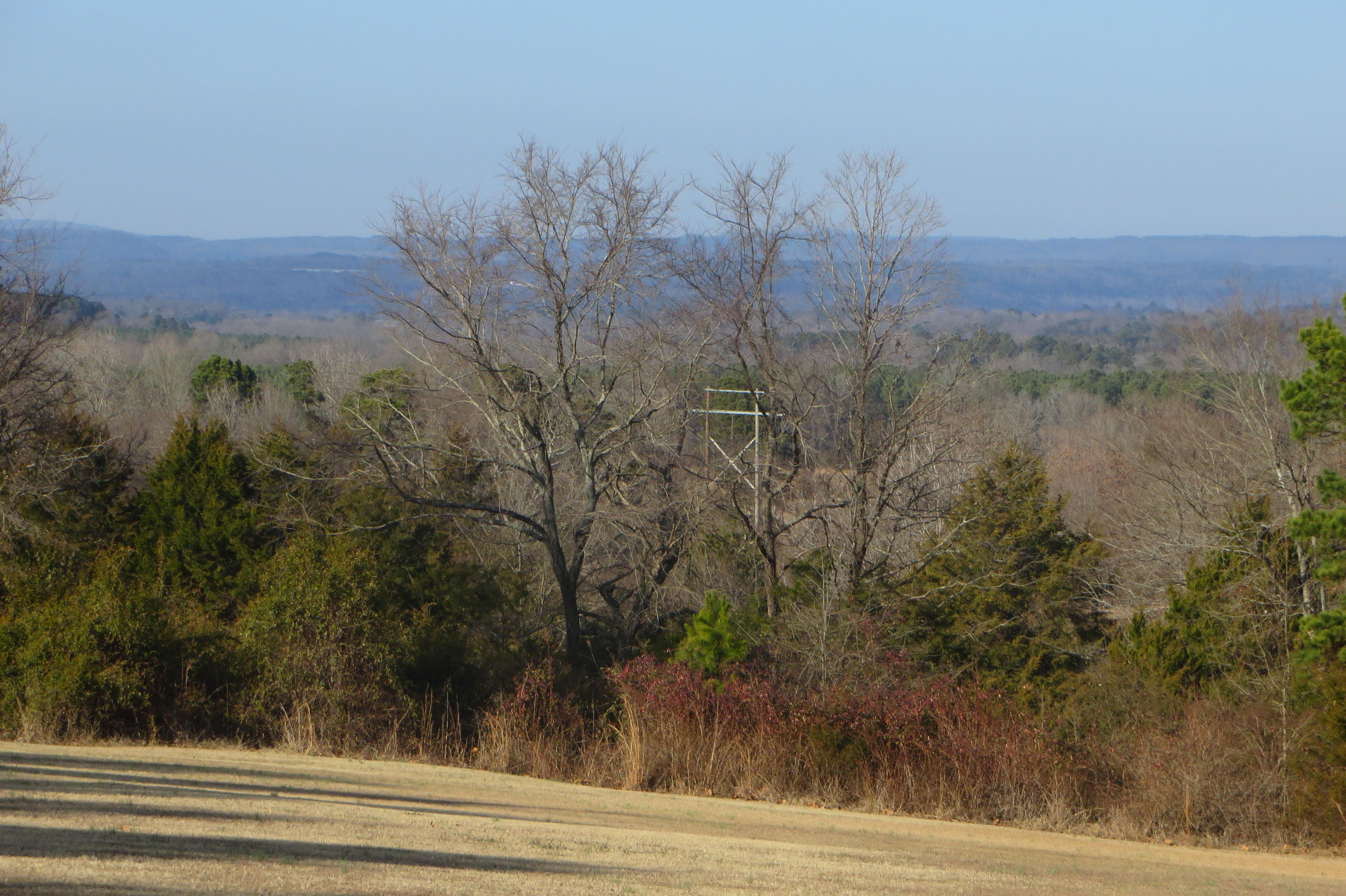 Large photo 40 of home for sale at 949 Terra Villa Road, Dover, AR