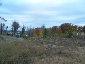 Corner Lot with some Lake Views