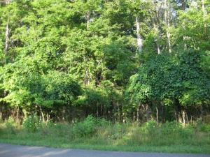 LOT 32 Old Mill DR, Hardy, VA 24101