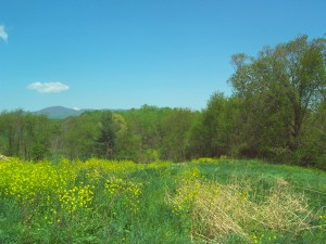 LOT 12 KEITHS PLACE DR, Rocky Mount, VA 24151