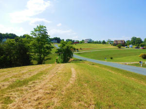 LOT 17 MALLARD COVE RD, Moneta, VA 24121