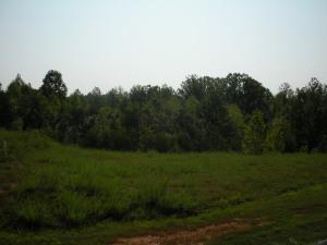 Lot 9 Golf View CT, Huddleston, VA 24104