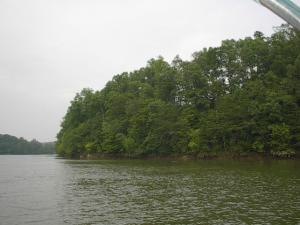 View of Lake from Lot