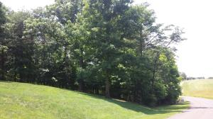 Lot 33 Whitetail DR, Huddleston, VA 24104