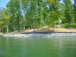 Lot 5 Baywatch DR, Moneta, VA 24121