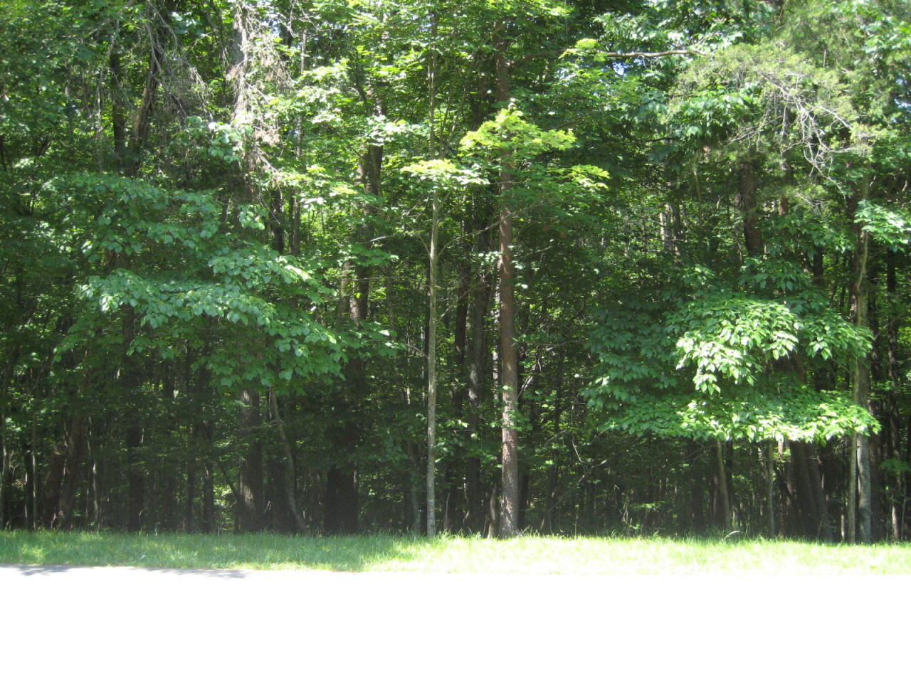 Photo of Lot 99 Woodley RD Moneta VA 24121