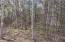 Lot 4 HOUSMAN FARM LN, Wirtz, VA 24184