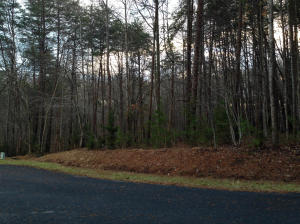 Lot 423 Fairway DR, Penhook, VA 24137