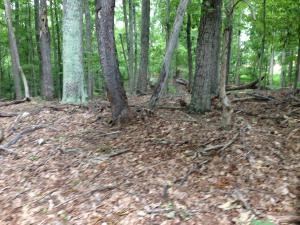 LOT 96 CHESTNUT DR, Hardy, VA 24101