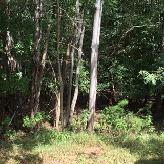Photo of Lot 21 Leeward DR Moneta VA 24121