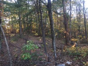 0 Retreat RD, Boones Mill, VA 24065