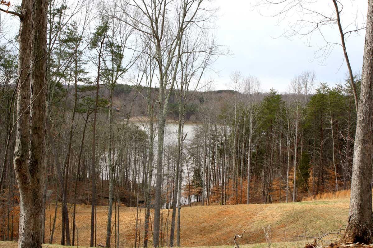 Photo of 0 Waterside DR Goodview VA 24095