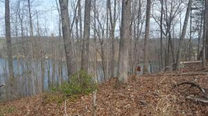Lot 79 Old Mill DR, Hardy, VA 24101