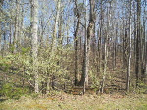 Lot 5 Little Creek RD, Moneta, VA 24121