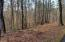 Lot 50 Forest Lawn DR, Moneta, VA 24121
