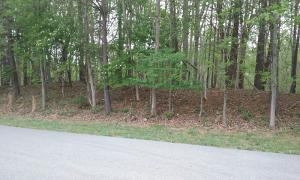 lot 107 Indian Ridge DR, Moneta, VA 24121
