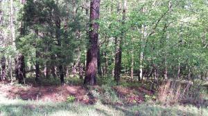 0 Dogwood Acre RD, Moneta, VA 24121