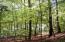 Lot 75 Forest Lawn DR, Moneta, VA 24121
