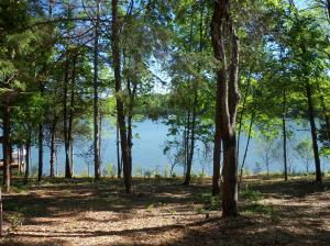 Lot 22 Lakemount CIR, Moneta, VA 24121