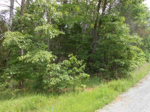 LOT 5 CUTLASS RD, Moneta, VA 24121