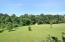 290 Mallard Cove RD, Moneta, VA 24121