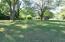 Huge Wooded Backyard
