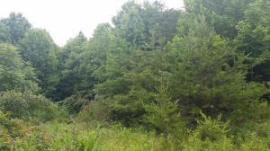 0 Rustic Ridge RD, Stuart, VA 24171