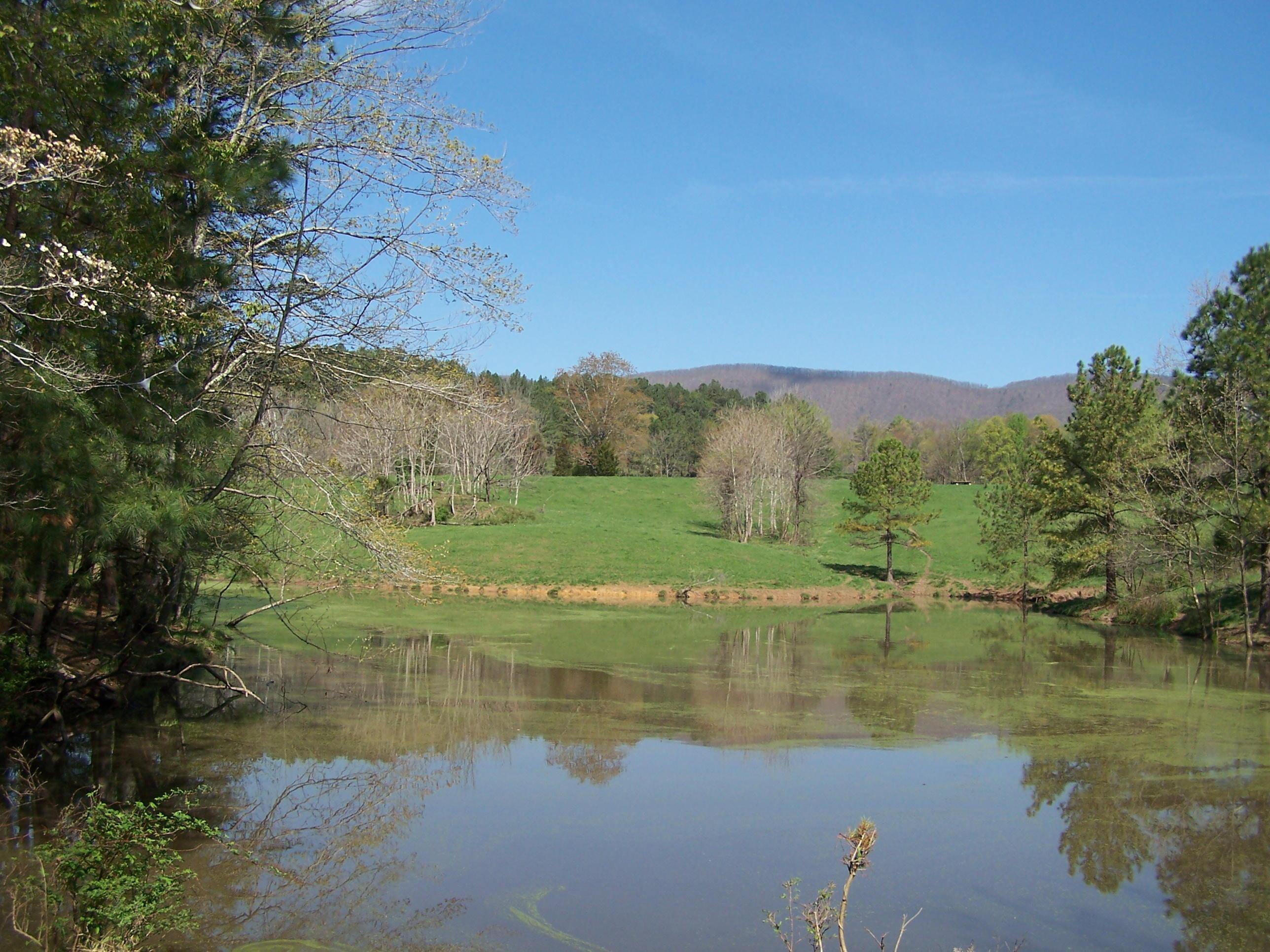 Photo of 0 Pike RD Montvale VA 24122