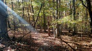 Lot 82 Summerset DR, Moneta, VA 24121