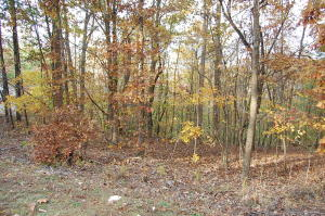 Lot 12 Gap Bridge RD, Moneta, VA 24121