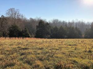 Lot 21 Longview Meadow DR, Buena Vista, VA 24416